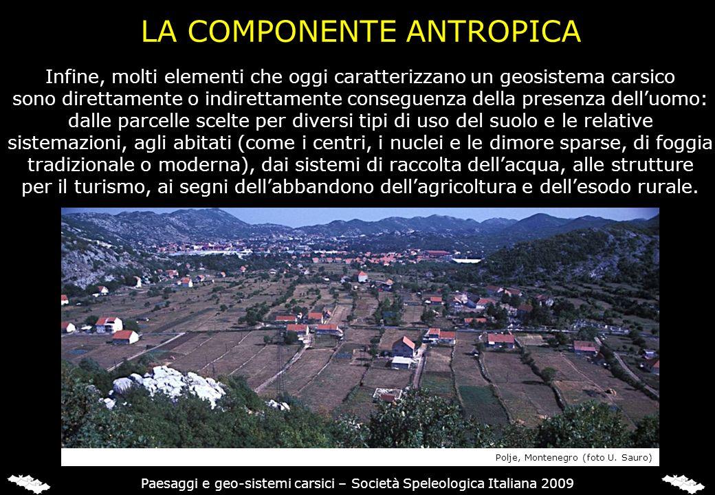LA COMPONENTE ANTROPICA