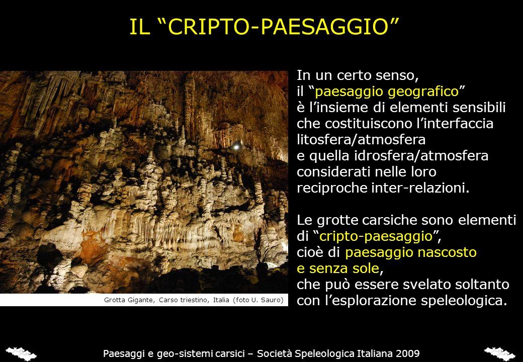 IL CRIPTO-PAESAGGIO