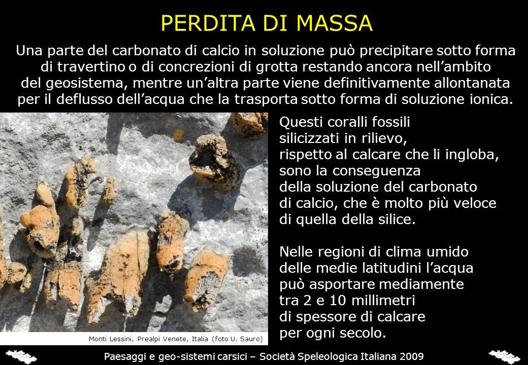 Paesaggi e geo-sistemi carsici – Società Speleologica Italiana 2009