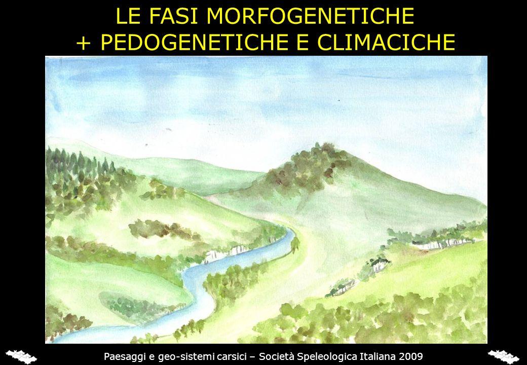 LE FASI MORFOGENETICHE + PEDOGENETICHE E CLIMACICHE