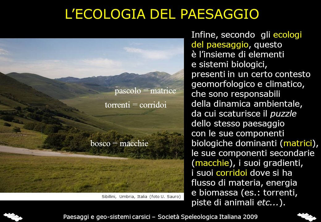 L'ECOLOGIA DEL PAESAGGIO