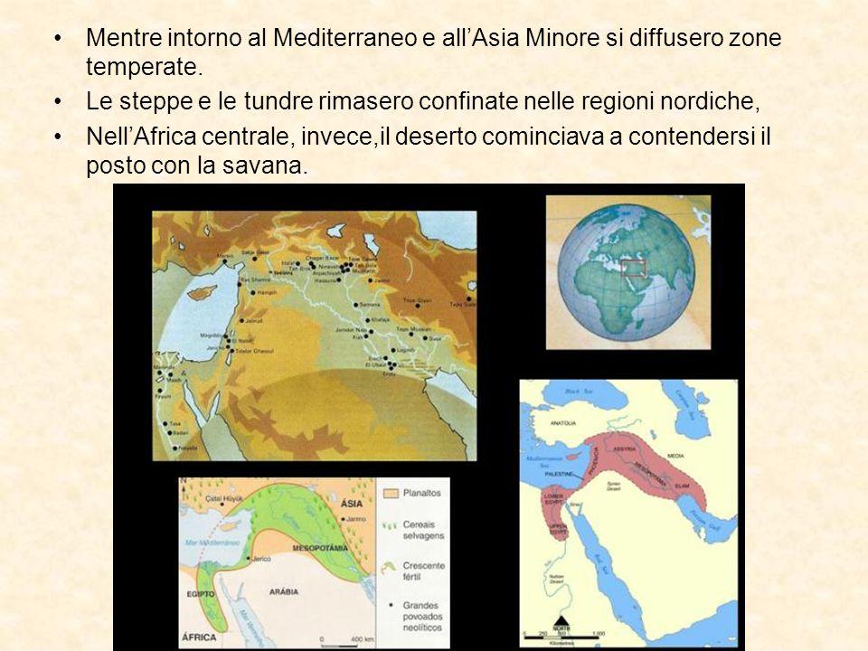 Mentre intorno al Mediterraneo e all'Asia Minore si diffusero zone temperate.