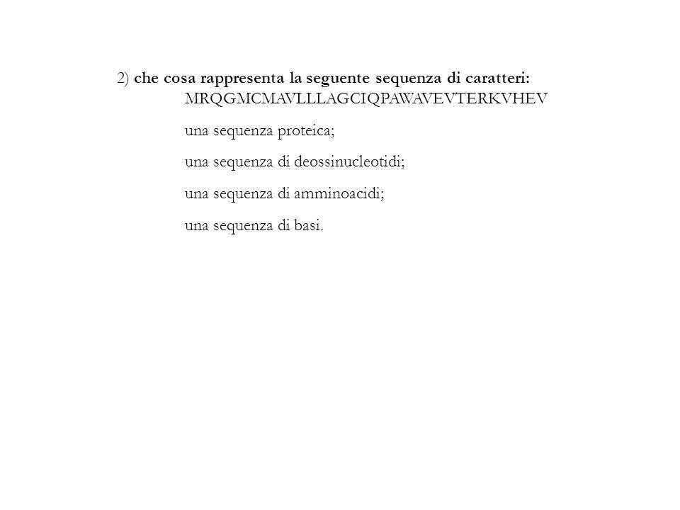 2) che cosa rappresenta la seguente sequenza di caratteri: