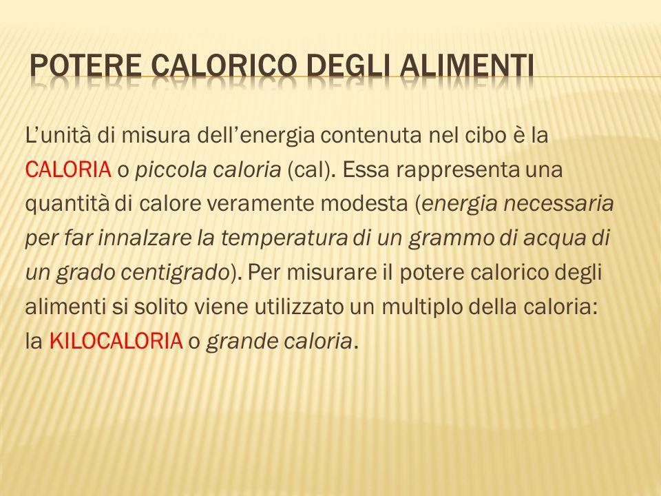 Potere calorico degli alimenti
