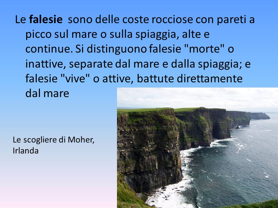 Le falesie sono delle coste rocciose con pareti a picco sul mare o sulla spiaggia, alte e continue. Si distinguono falesie morte o inattive, separate dal mare e dalla spiaggia; e falesie vive o attive, battute direttamente dal mare