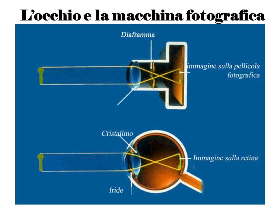 L'occhio e la macchina fotografica