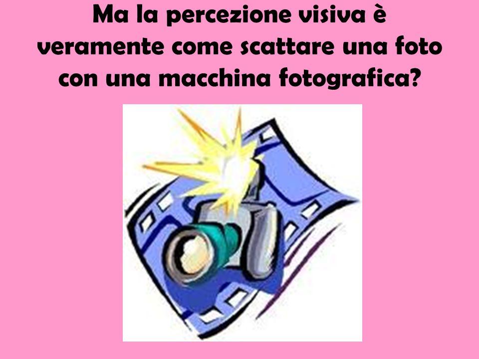 Ma la percezione visiva è veramente come scattare una foto con una macchina fotografica