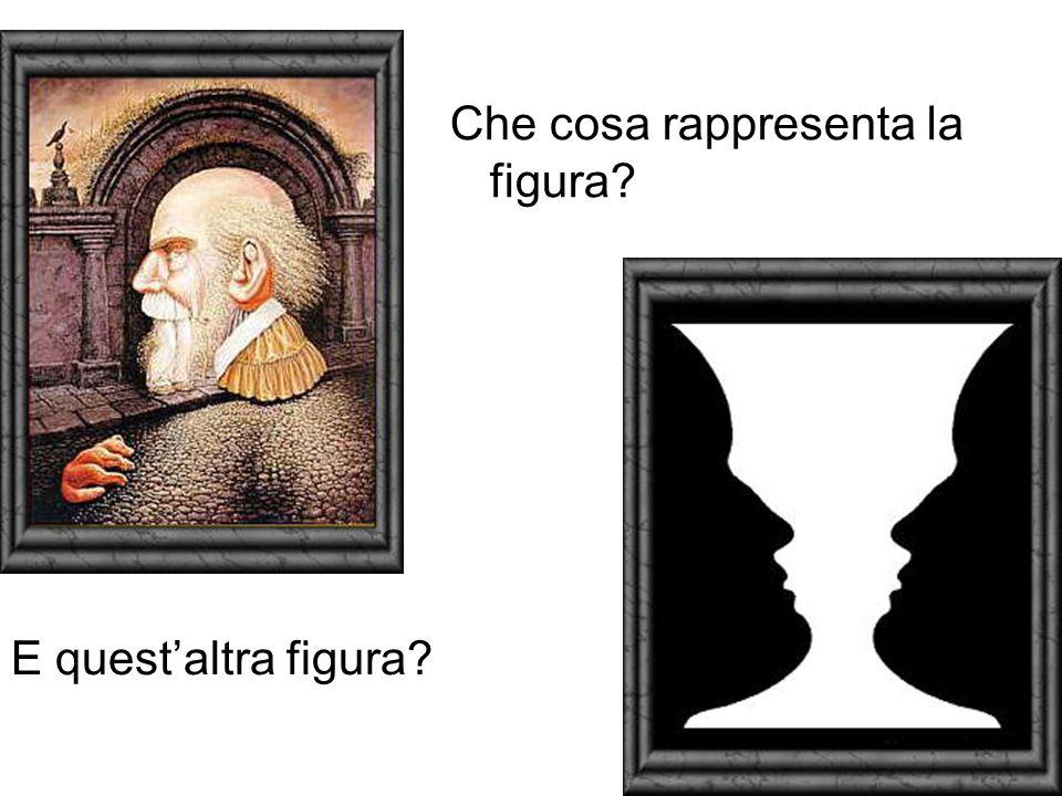 Che cosa rappresenta la figura