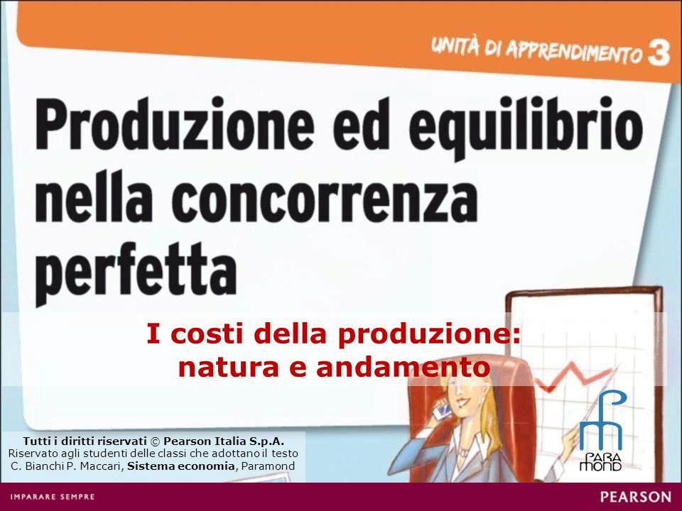 I costi della produzione: natura e andamento