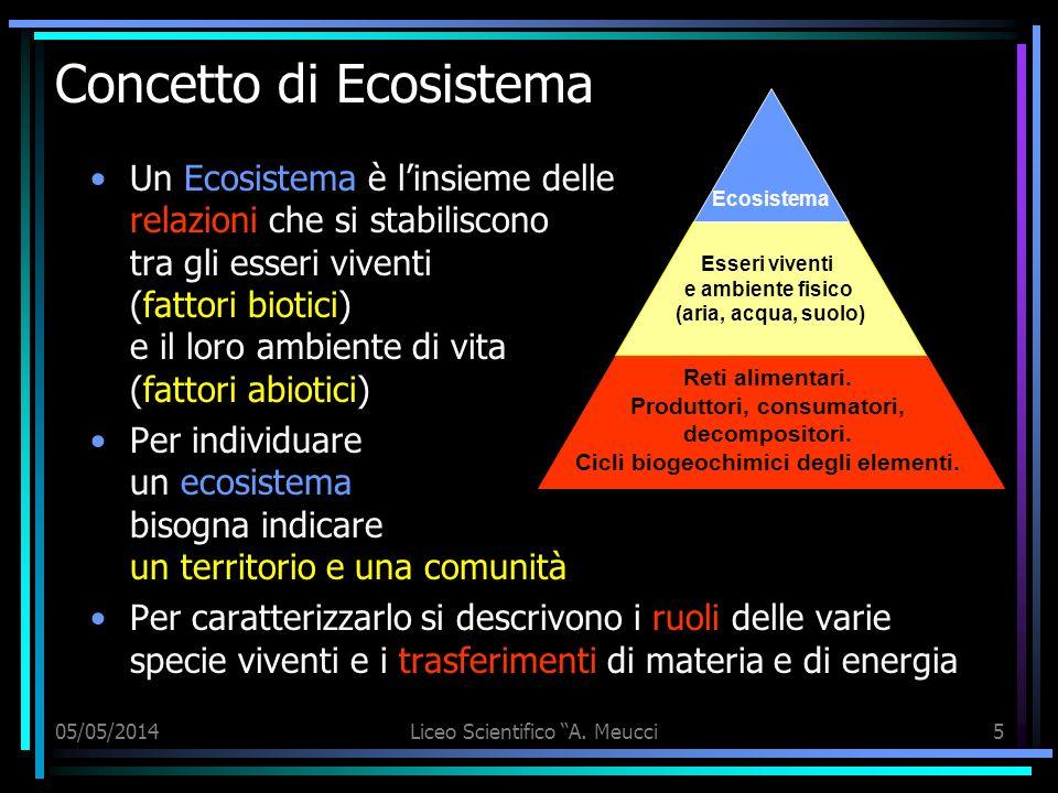 Concetto di Ecosistema