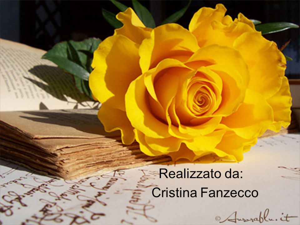 Realizzato da: Cristina Fanzecco