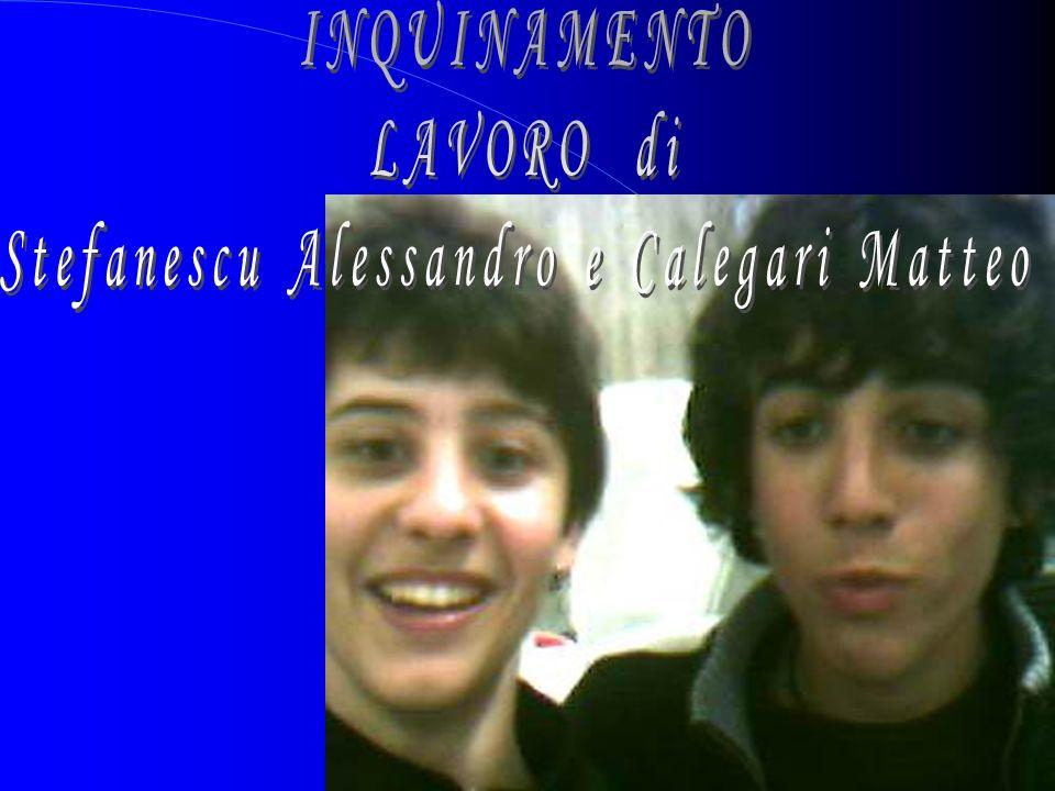 Stefanescu Alessandro e Calegari Matteo
