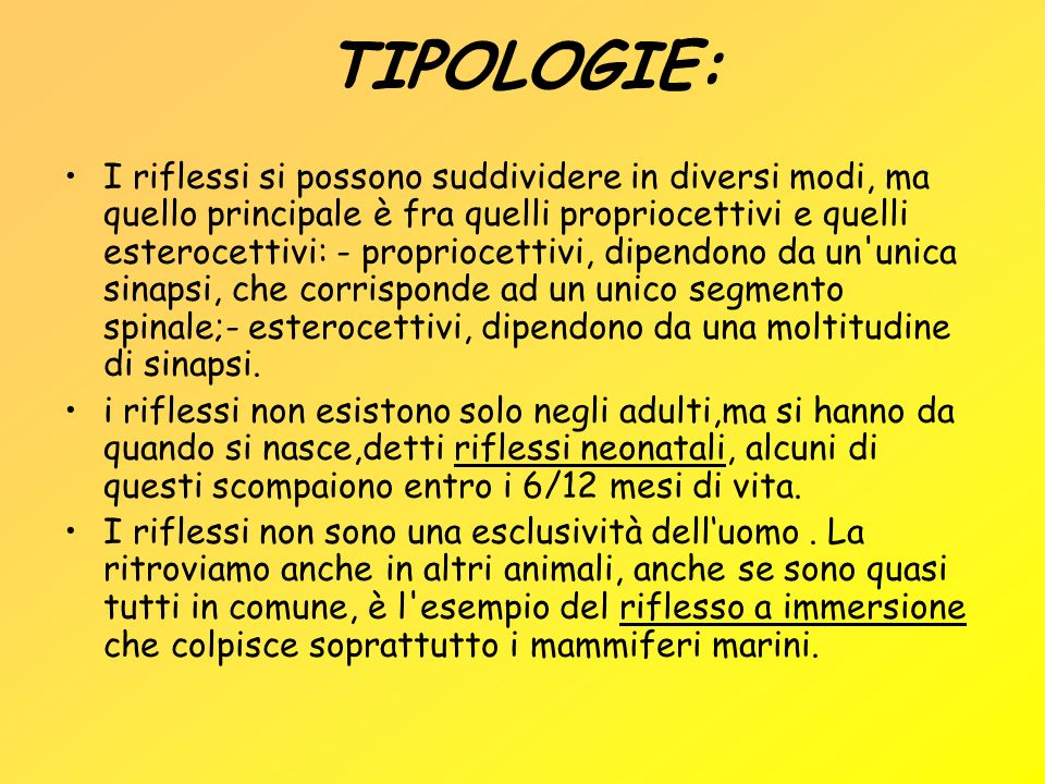 TIPOLOGIE: