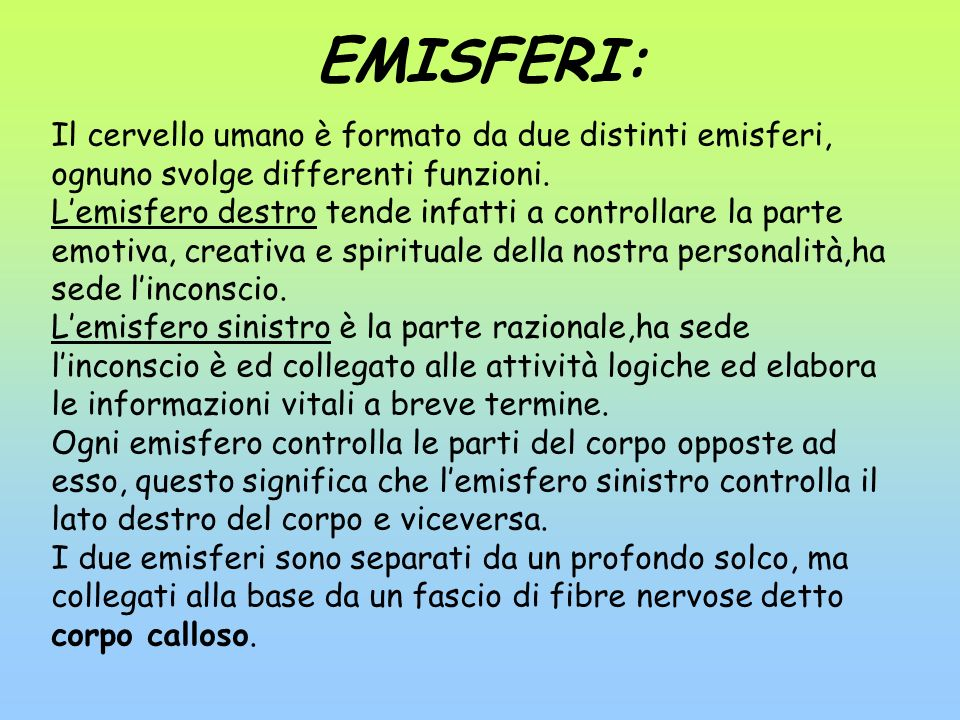 EMISFERI: Il cervello umano è formato da due distinti emisferi, ognuno svolge differenti funzioni.