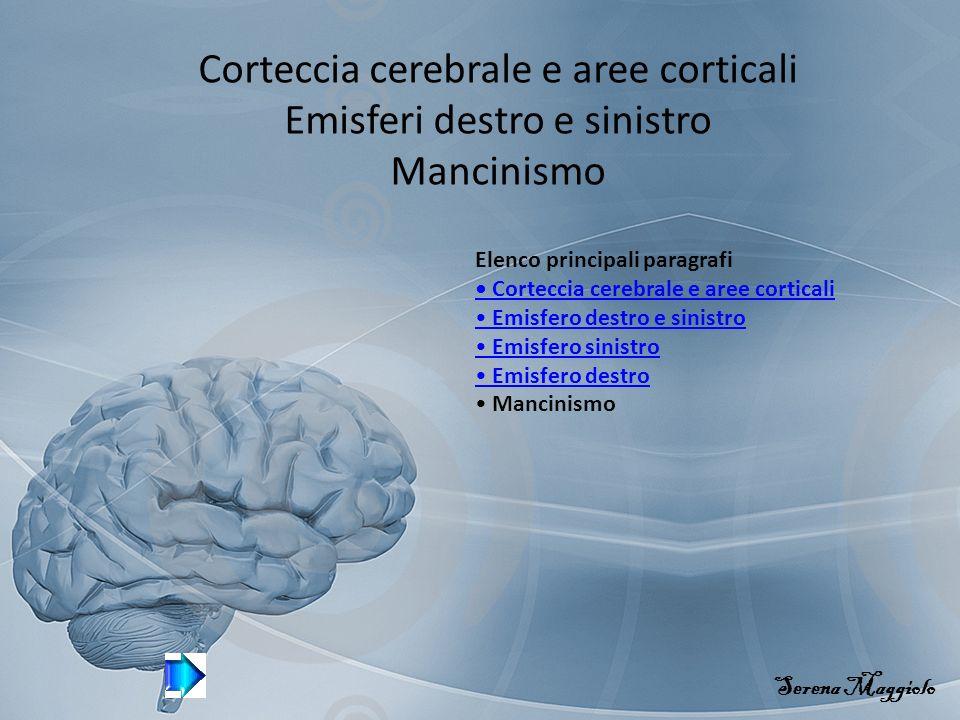 Corteccia cerebrale e aree corticali Emisferi destro e sinistro