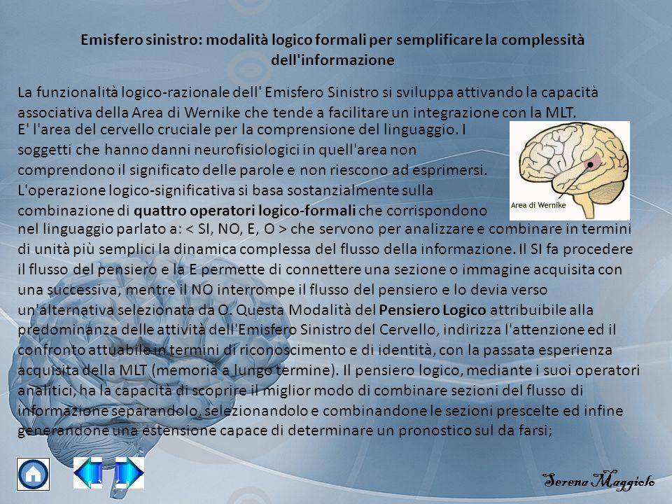 Emisfero sinistro: modalità logico formali per semplificare la complessità dell informazione