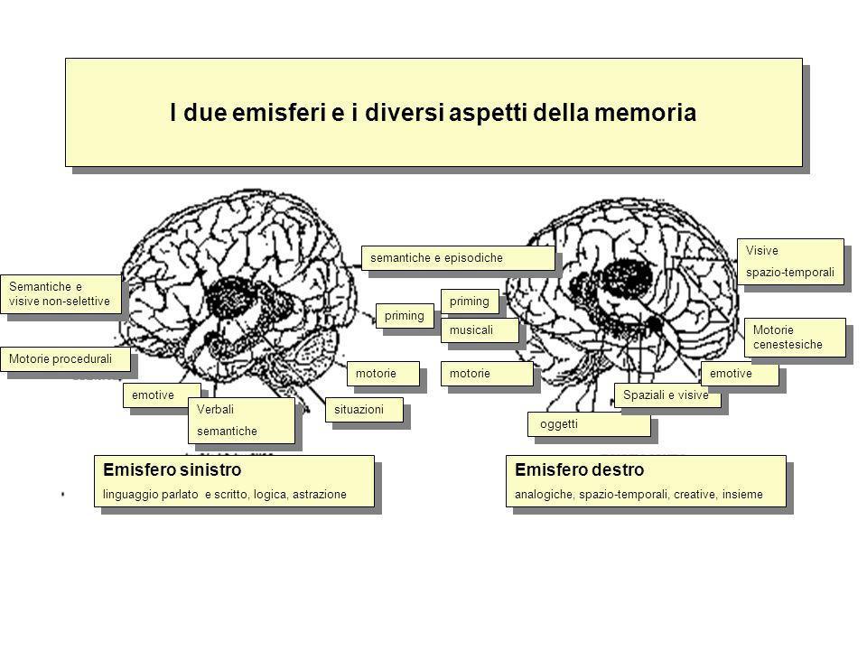 I due emisferi e i diversi aspetti della memoria