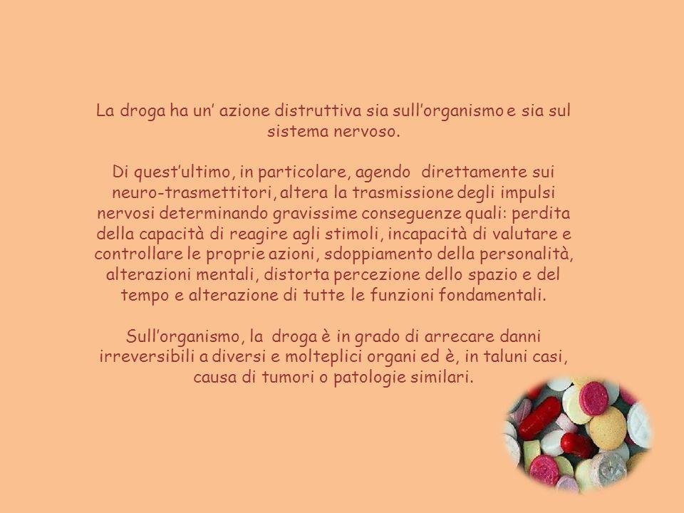 La droga ha un' azione distruttiva sia sull'organismo e sia sul sistema nervoso.