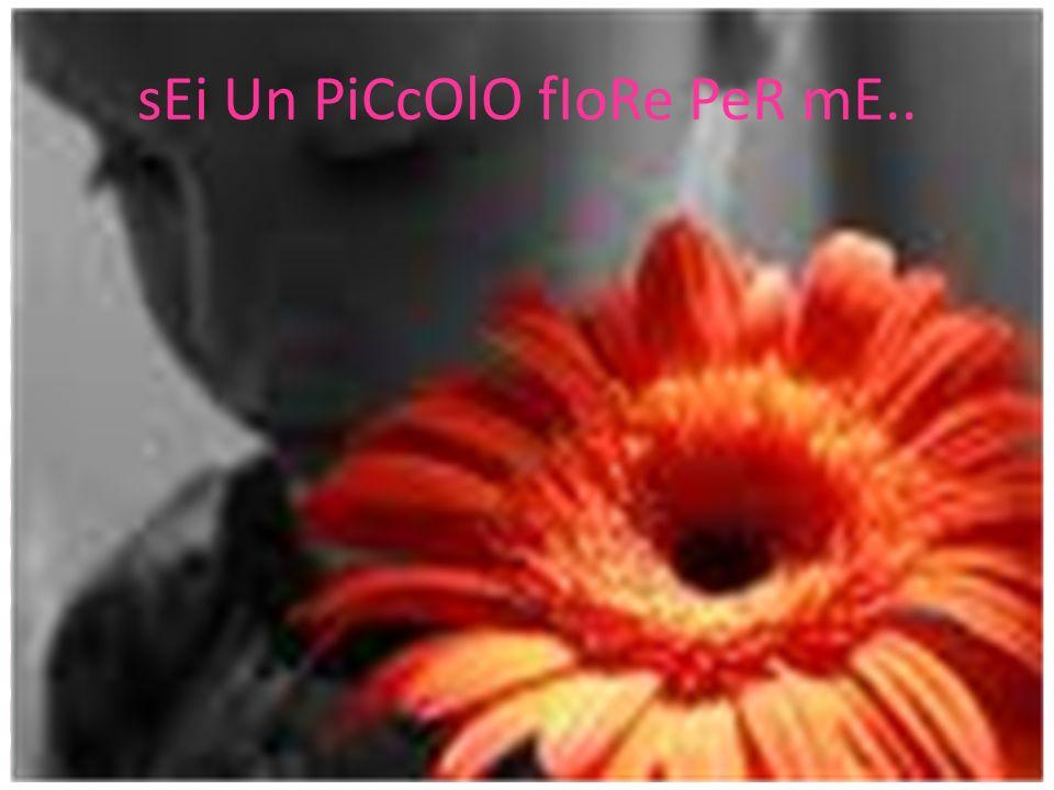 sEi Un PiCcOlO fIoRe PeR mE..