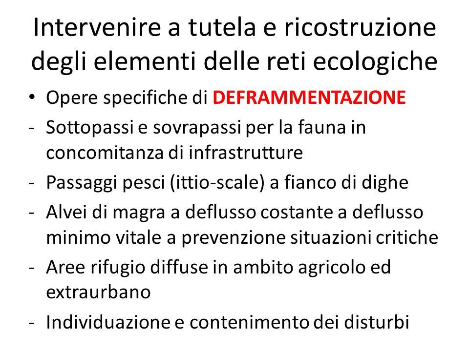 Intervenire a tutela e ricostruzione degli elementi delle reti ecologiche