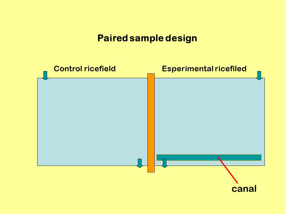 Paired sample design Control ricefield Esperimental ricefiled canal