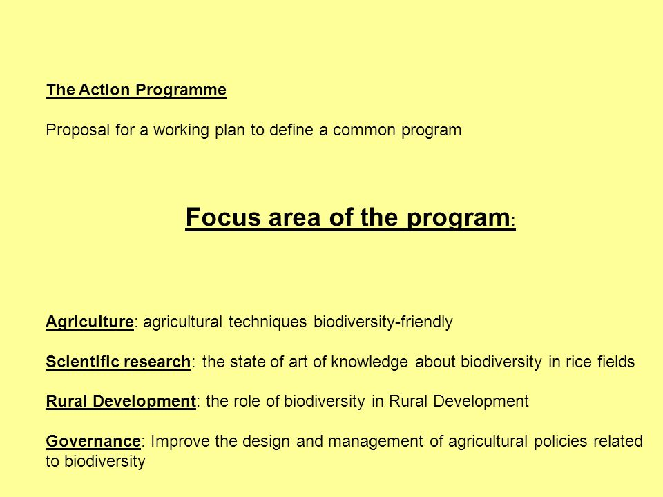 Focus area of the program: