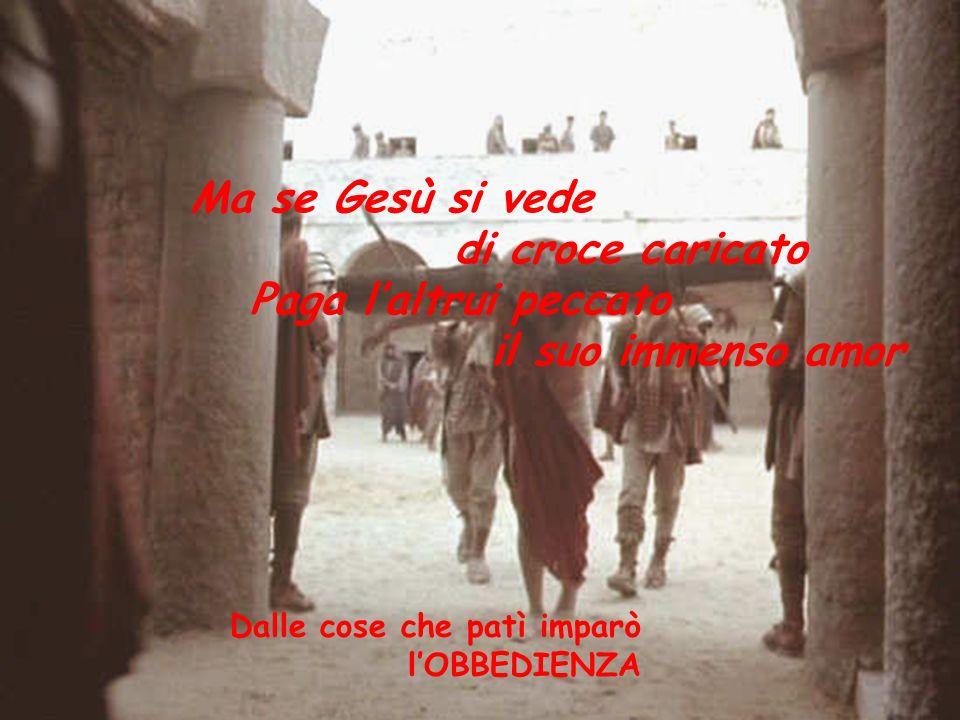 di croce caricato Paga l'altrui peccato il suo immenso amor