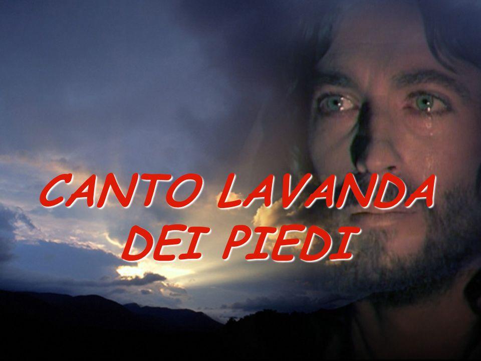 CANTO LAVANDA DEI PIEDI