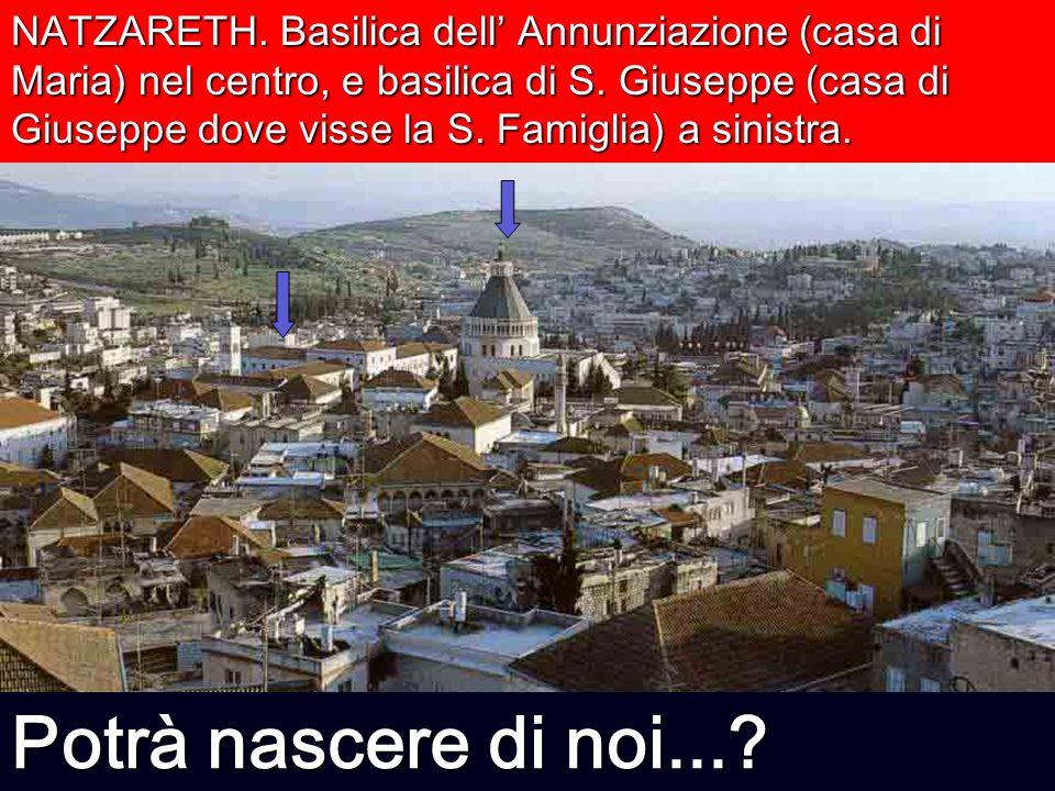 NATZARETH. Basilica dell' Annunziazione (casa di Maria) nel centro, e basilica di S. Giuseppe (casa di Giuseppe dove visse la S. Famiglia) a sinistra.