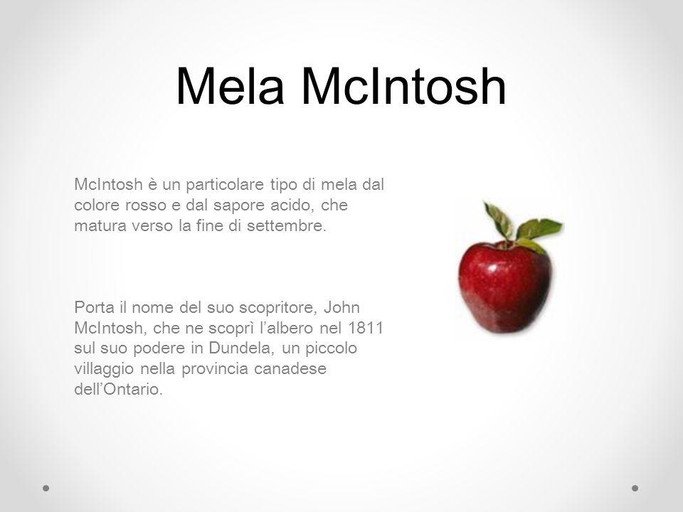 Mela McIntosh McIntosh è un particolare tipo di mela dal colore rosso e dal sapore acido, che matura verso la fine di settembre.
