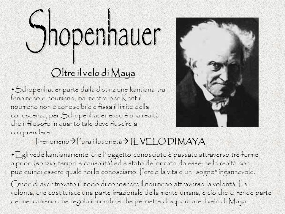 Shopenhauer Oltre il velo di Maya