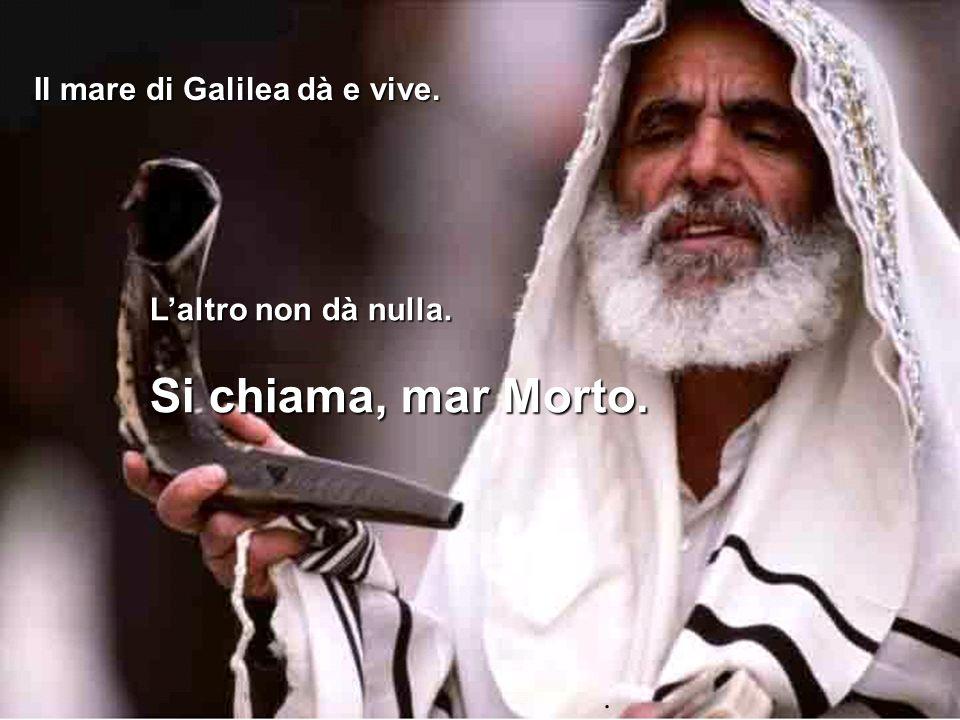 Il mare di Galilea dà e vive.