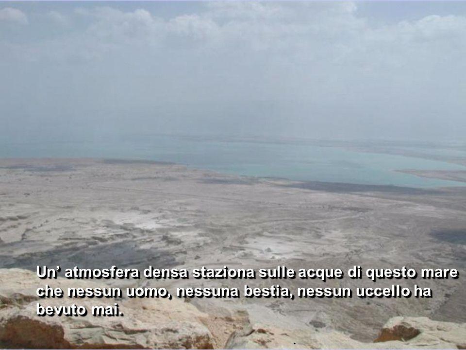 Un' atmosfera densa staziona sulle acque di questo mare che nessun uomo, nessuna bestia, nessun uccello ha bevuto mai.