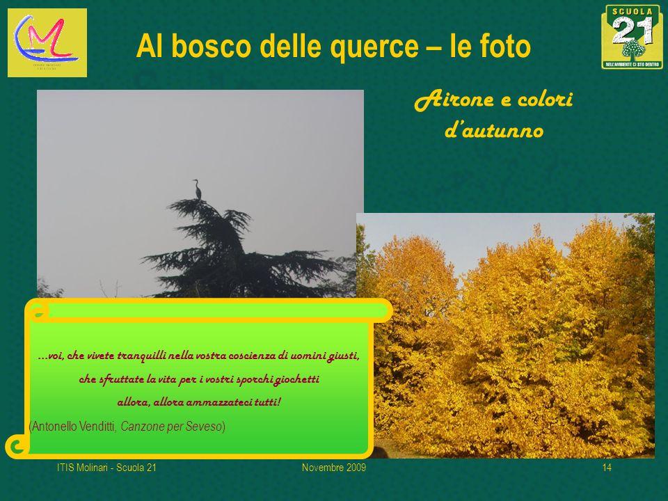 Al bosco delle querce – le foto