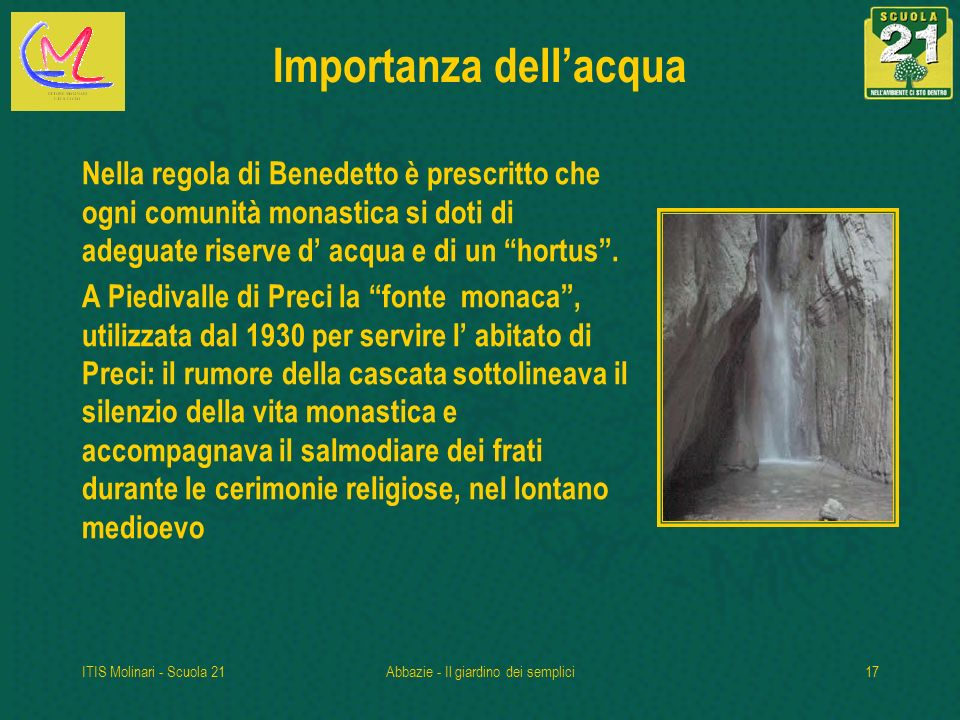 Importanza dell'acqua