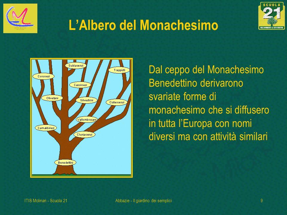 L'Albero del Monachesimo