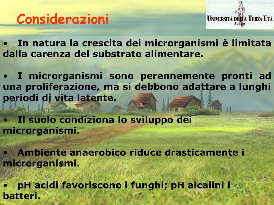 Considerazioni In natura la crescita dei microrganismi è limitata dalla carenza del substrato alimentare.