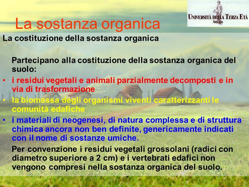 La sostanza organica La costituzione della sostanza organica