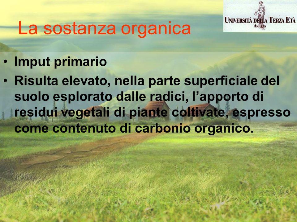 La sostanza organica Imput primario