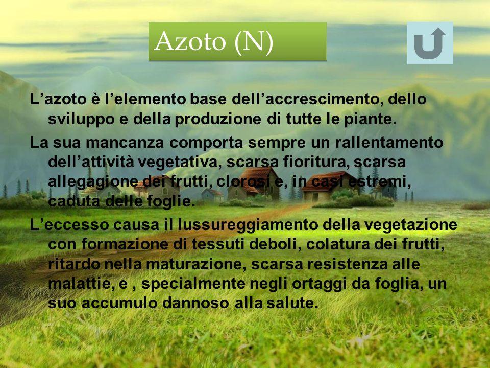 Azoto (N) L'azoto è l'elemento base dell'accrescimento, dello sviluppo e della produzione di tutte le piante.
