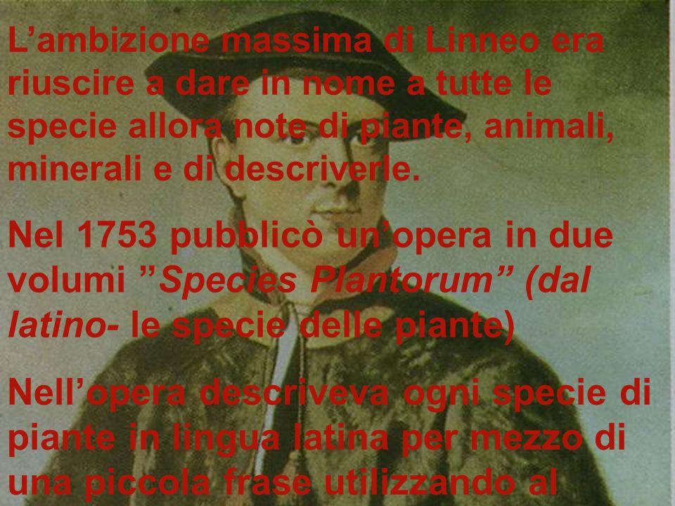 L'ambizione massima di Linneo era riuscire a dare in nome a tutte le specie allora note di piante, animali, minerali e di descriverle.