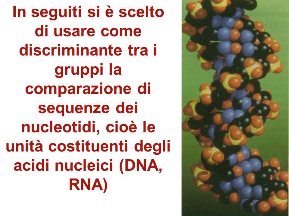 In seguiti si è scelto di usare come discriminante tra i gruppi la comparazione di sequenze dei nucleotidi, cioè le unità costituenti degli acidi nucleici (DNA, RNA)