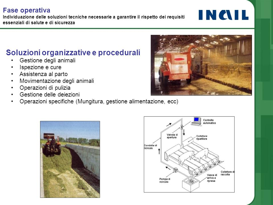 Soluzioni organizzative e procedurali