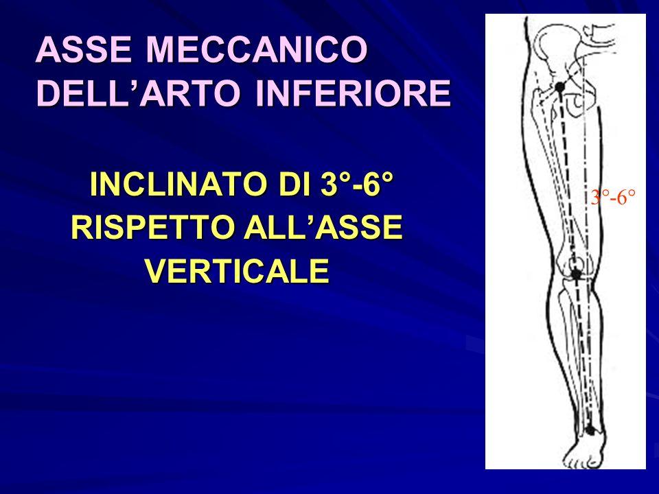 ASSE MECCANICO DELL'ARTO INFERIORE