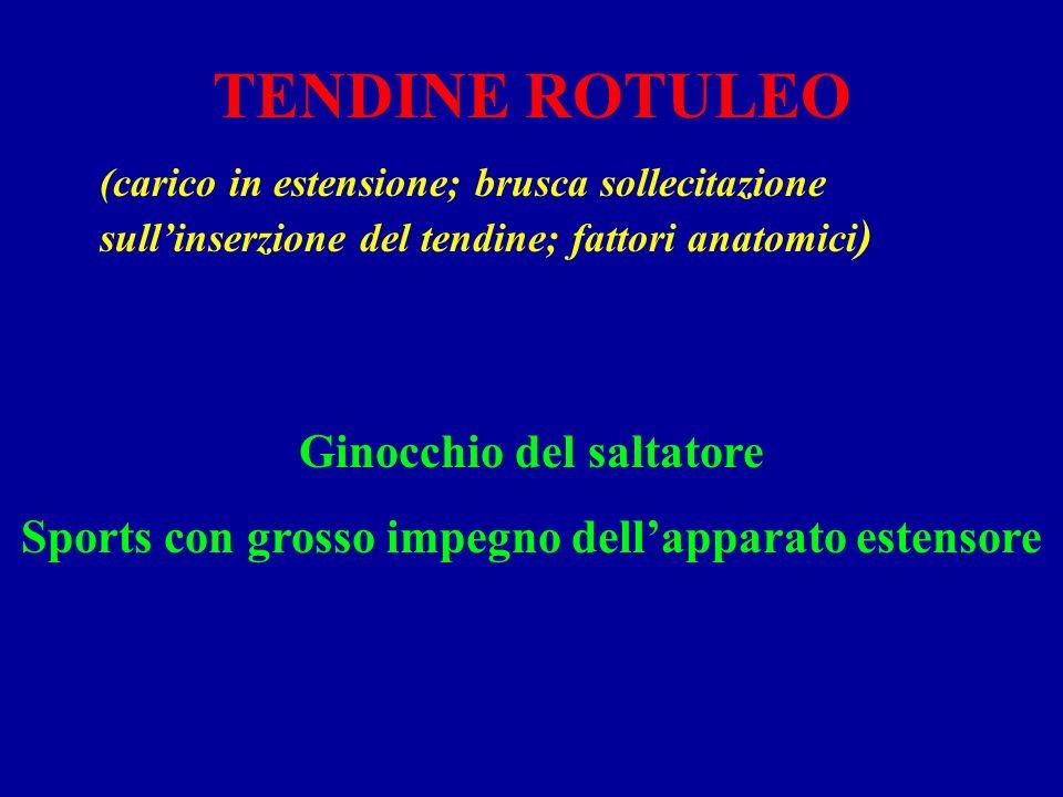 TENDINE ROTULEO Ginocchio del saltatore