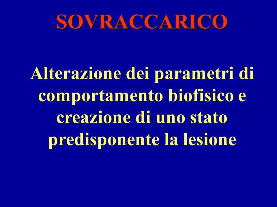 SOVRACCARICO Alterazione dei parametri di comportamento biofisico e creazione di uno stato predisponente la lesione.