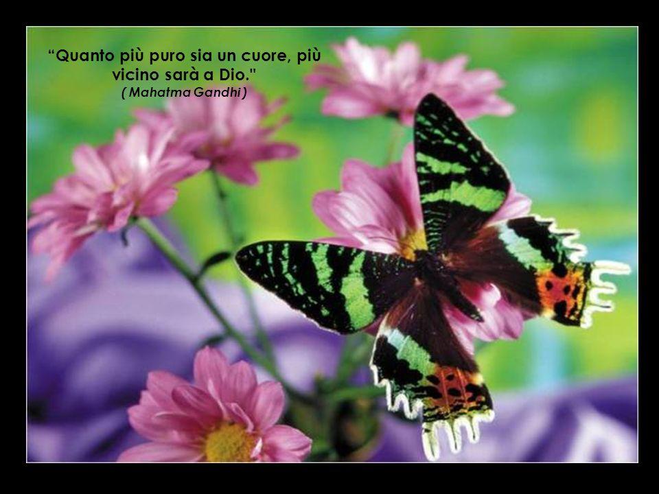 Quanto più puro sia un cuore, più vicino sarà a Dio