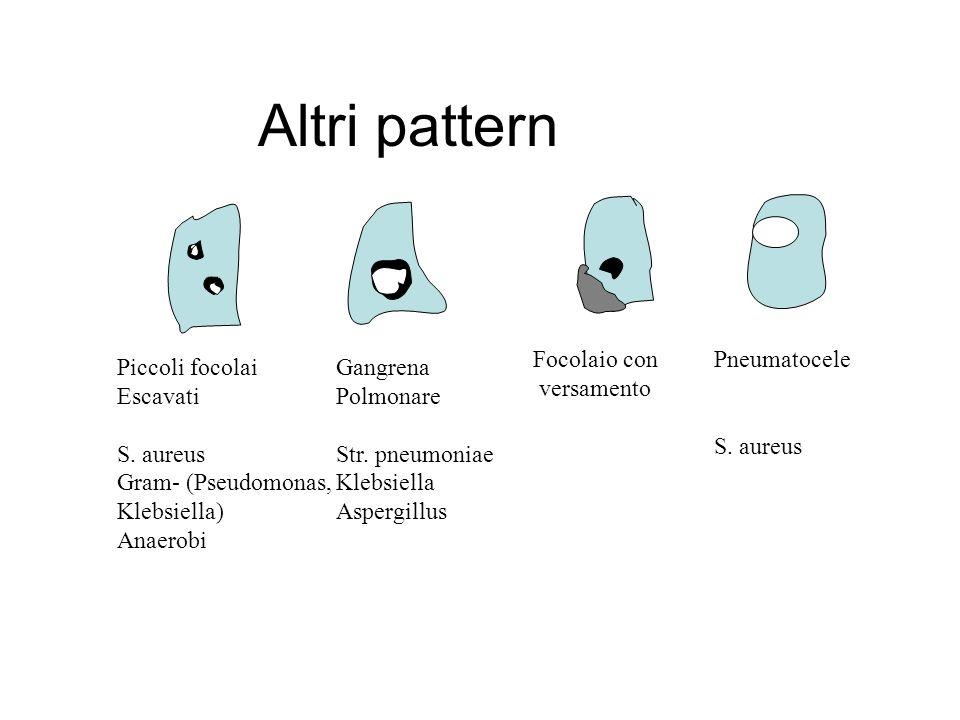 Altri pattern Focolaio con versamento Pneumatocele S. aureus