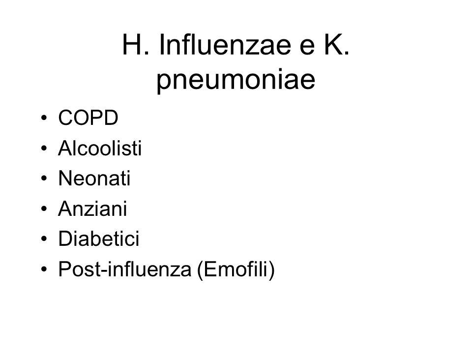 H. Influenzae e K. pneumoniae