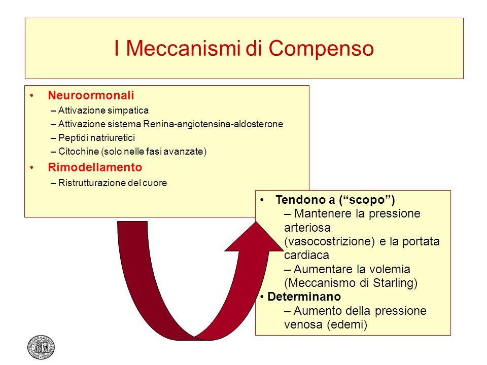 I Meccanismi di Compenso